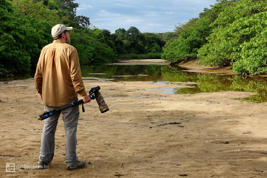 Another Day in Bird's Paradise, standing on a dry sidearm of the Guayabero river in La Macarena/Meta, Colombia.