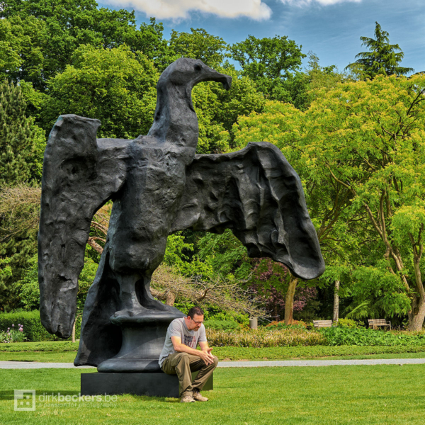 """I was thinking about publishing more bird photos in my gallery while sitting on a statue of Johan Creten's """"Pliny's Sorrow"""" (Cormorant) at the Middelheim Museum in Antwerp, Belgium."""